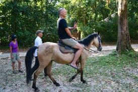 He is heavy! (horse)