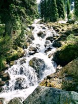 Stream on the rocks