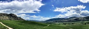 Sweeping view of Okanagan Valley