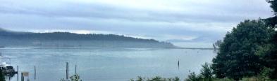 Misty marina