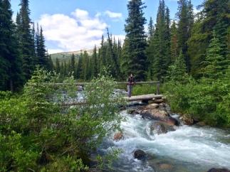 Evelyne Creek