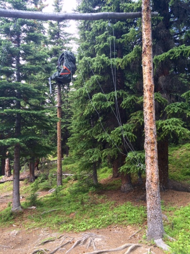 Food Hanging Poles (Anti-Bear)
