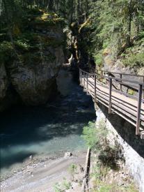 Bridges on the way