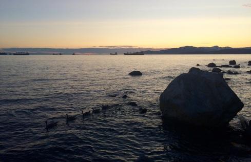 Sunset and ducks