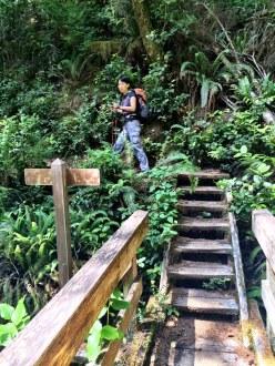 Many creeks and steps