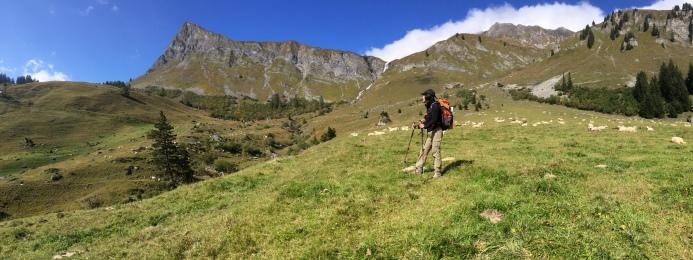 Alp Stürfis
