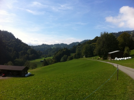 A green pastureland of Fadära - peaceful countryside
