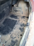 Sandy trunk