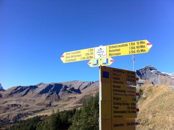 Gross Scheidegg in the sun