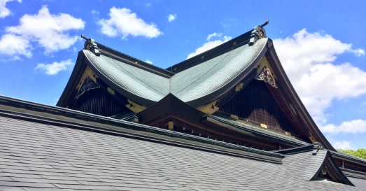 Beauty of this roof!