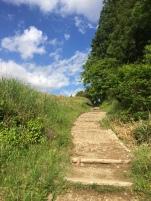 Mountain path..