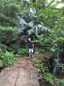 Walking up to the waterfalls