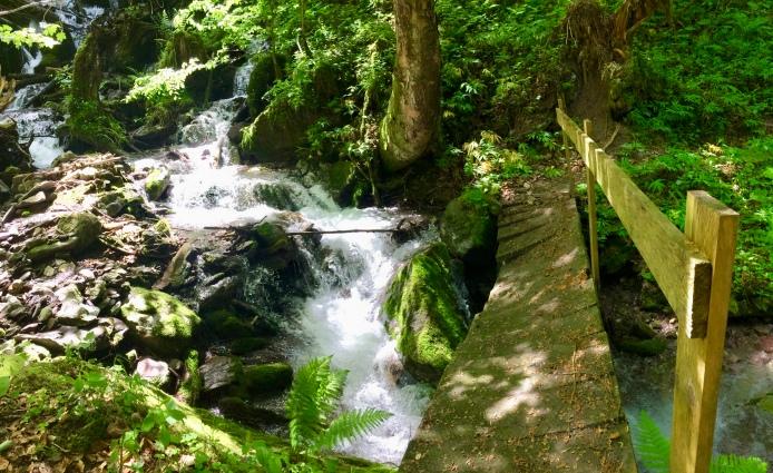 Challenge 2: a small wooden bridge is slanting downwards : (