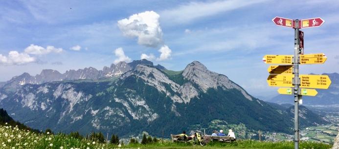 Gonzen view