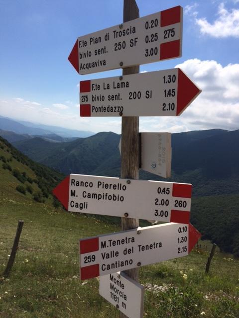 Today's trailhead Monte Morcia