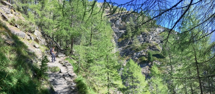 The path to Alterhaupt Edelweiss
