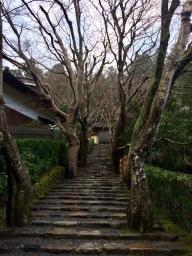 Jyakko-in, in Ohara. One of my favorite temples.