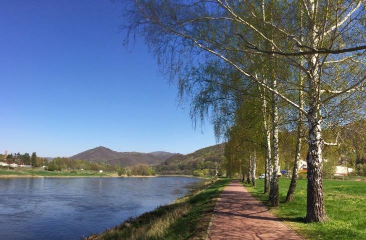 Riding along the Elbe