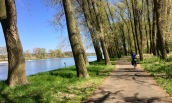 A bike path along the Elbe