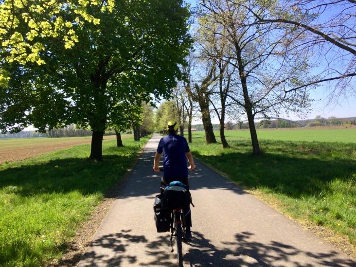 Biking through the beautiful Veltrusy Park