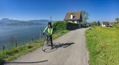 View from Feldbach over lake Zurich