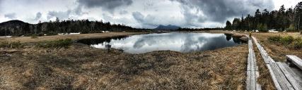 Kinunuma Marsh