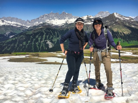 Walking up in snowshoes in June!