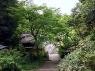 Himukai Daijingu Shrine 日向大神宮