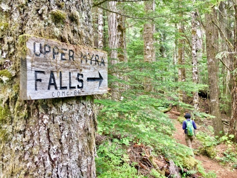 Upper Myra Falls trailhead