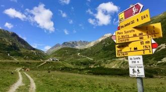 Alp Suvretta
