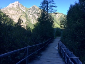 "Beautifully maintained wooden watercourse (""bisse"") and bridge"