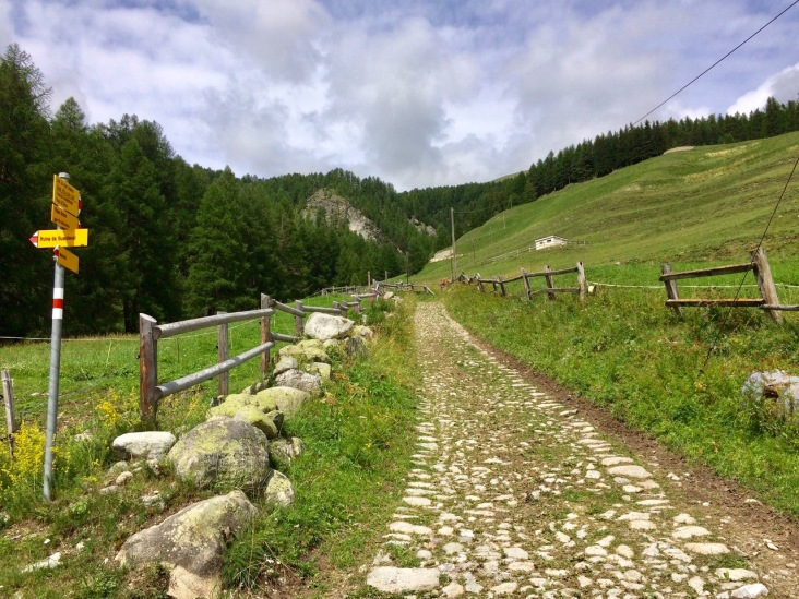 Historical stone-paved path