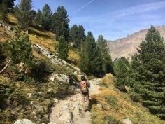 A beautiful path with autumn feeling