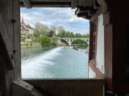 A peak from the wooden bridge
