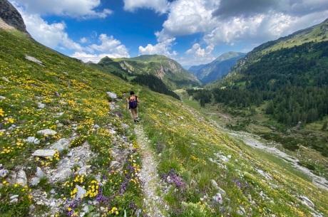 Full of alpin flowers