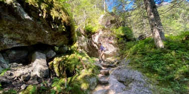 Walking up in the dense forest and rocks